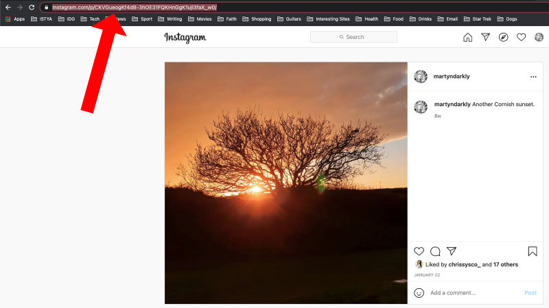 How to download Instagram photos: Copying URL